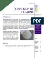 Extraccion de Gelatina