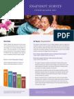 Snapshot Survey - Fourth Quarter 2012