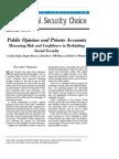 Public Opinion and Private Accounts