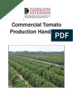 Tomato Cultivation Short