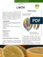 16 - Limon