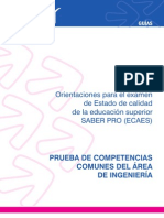 Guia ingenieria_2011.pdf