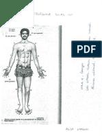 Documento 10- Tecnica numeral de los papues de Guinea.pdf