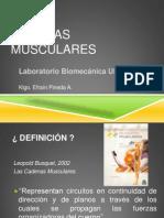 01 Cadenas Musculares