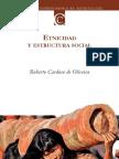 Etnicidad y Estructura Social