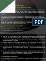 Copia de Presentacion Mcrobiologia General Bolilla 1 - 2