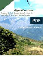 territorio indigena kankuamo.proceso de reconfiguración del resguardo desde als dimensiones socioculturales