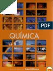 131351562 Quimica Santillana