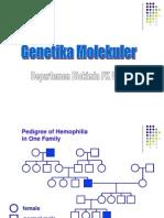 k30-k33 Genetika Molekular