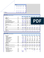 Financial model-Mega Brand