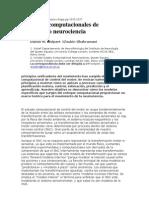 11 2000 Volumen 3 Número Supp pp 1212