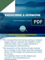 Endocrine & Hormone