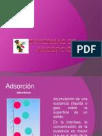 Isotermas de adsorción2