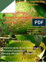 789presencia Hongo Alternaria Peru