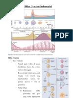 Siklus Ovarian-Endometrial.pdf