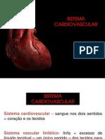 S. Circulatorio (1)