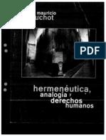 Beuchot Mauricio, Hermeneutica Analogia y Derechos Humanos