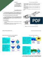 Definicion de Flujo Canales Abiertos (Practica 3 y 4) Diciembre 2012