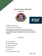 ORGANIZACION La Vacona Correccion