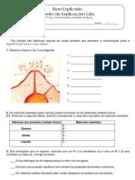 B - 3.1 - Ficha Formativa - Actividade Vulcânica (3)