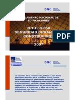Reglamento Nacional de Edificaciones NTE G050