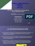 Proyecto Bolsa Biodegradable