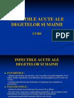Infectiile Acute Ale Degetelor Si Mainii