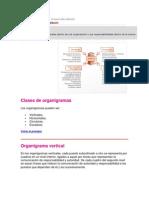 CLASES N° 4   Tipos de organigramas