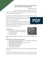 Propuesta de publicación (PILAS).docx