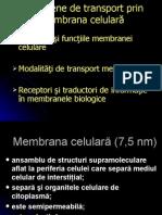 Trans Membra
