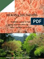 Gradina Din Paradis (1)