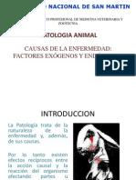 CAUSAS DE LA ENFERMEDAD  FACTORES EXÓGENOS Y ENDÓGENOS.