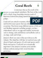 Coral Reefs Text2