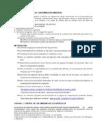 TALLER DE APLICACIÓN DE CONTAMINACIÓN AMBIENTAL