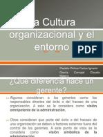 La Cultura Organizacional y El Entorno