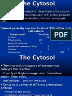 Cytosol-1.ppt