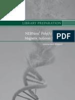 NEB mRNA Lisolation Manual