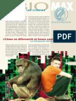 ¿Cómo se diferencio el homosapiens del simio