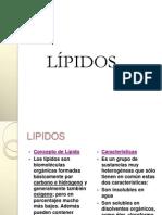lipidos1-100805143510-phpapp02