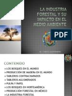 La Industria Forestal y Su Impacto en El