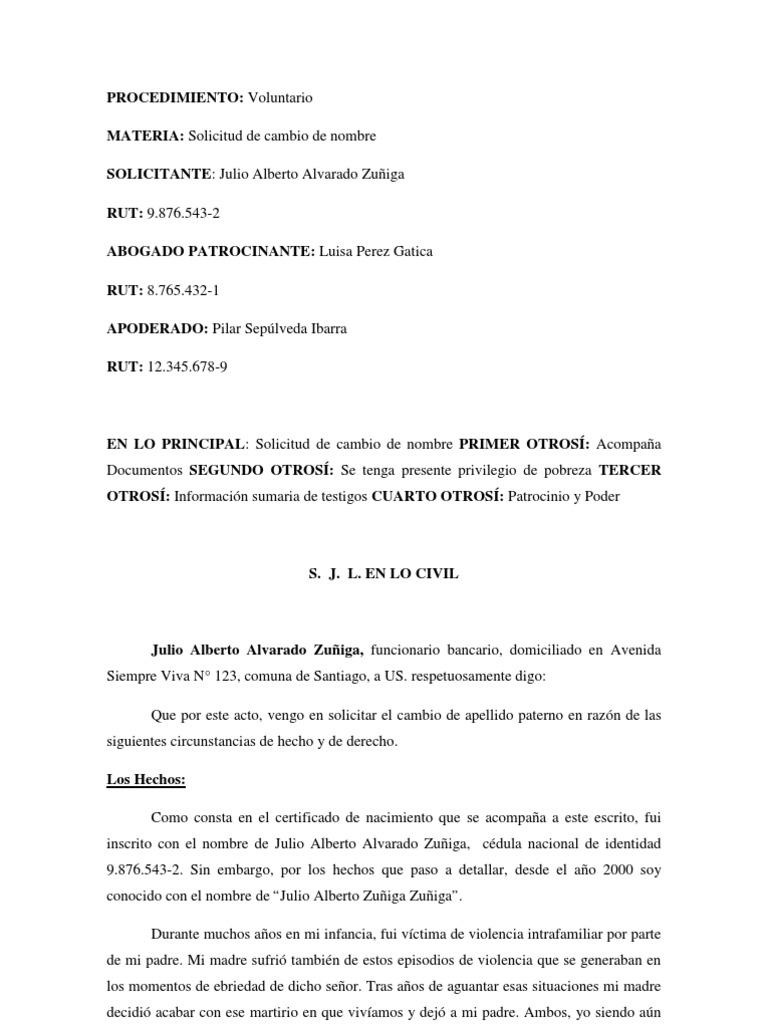 Cambio El Nombre En Chile - Zomerjassen