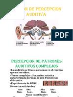 Patron de Percepcion Auditiva Expo