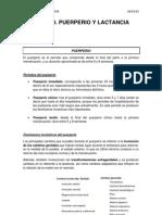 Tema 12 - Puerperio y Lactancia (16!11!12)