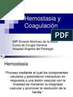 20090715 Hemostasia y Coagulaci n