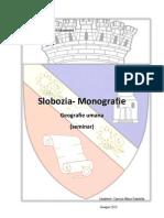 Referat Monografie Slobozia+ Fise Geografi