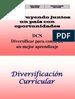 Diverisificacion Curricular Agp