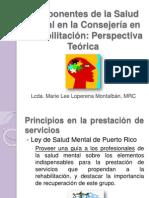 COMPONENTES SALUD MENTAL EN LA CR LCDA. LOPERENA