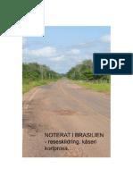 Noterat i Brasilien - Reseskildring, kåseri, kortprosa