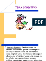 1218621225_2254.sistema_digestivo