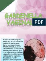 Garden Ella